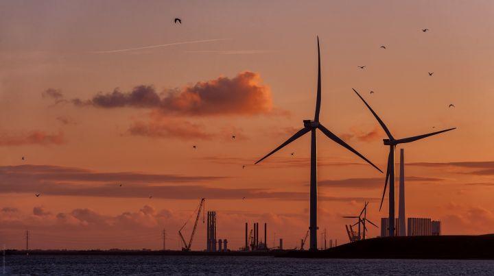 Esbjerg havn i solnedgang