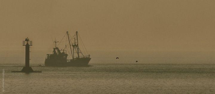 Rejekutter på vej ud af Esbjerg Havn