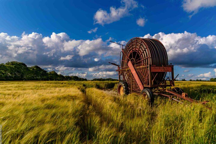 Vandingsmaskine på marken, hvor kornet står højt og skyerne kravlede ind